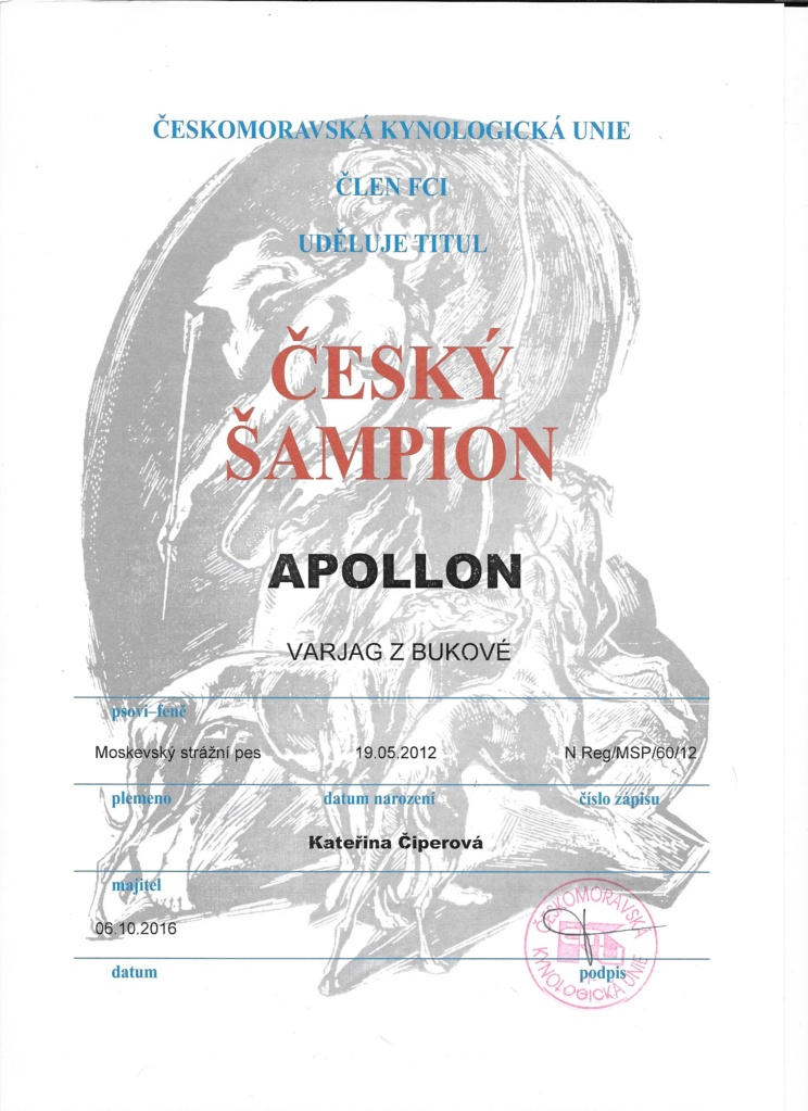 apollon-cz-champ